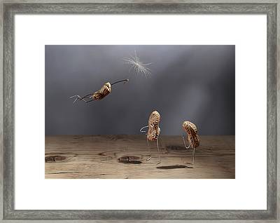 Simple Things - Flying Framed Print by Nailia Schwarz