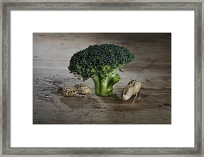 Simple Things - Man And Dog Framed Print by Nailia Schwarz