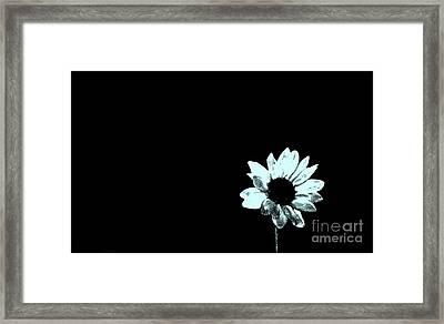 Simplicity  Framed Print by Juls Adams