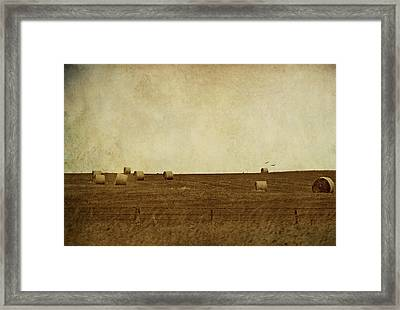 Framed Print featuring the digital art Simplicity by Margaret Hormann Bfa