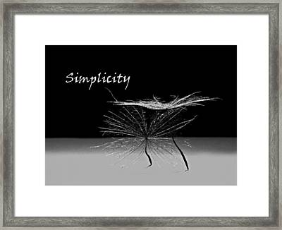 Simplicity Pods Framed Print by Barbara St Jean