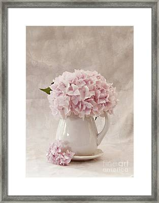Simplicity Framed Print by Sherry Hallemeier