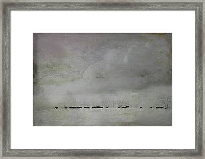 Simplistic Beauty Framed Print by Kathy Jennings