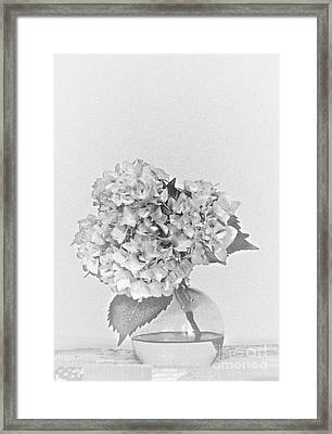 Simplistic Living In Black And White Framed Print