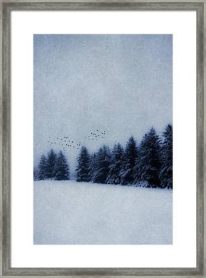 Simply Framed Print