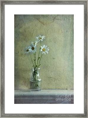 Simply Daisies Framed Print