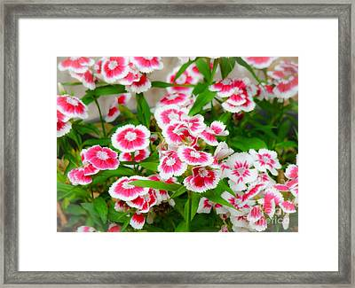 Simply Flowers Framed Print