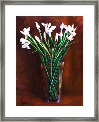Simply Iris Framed Print by Shannon Grissom