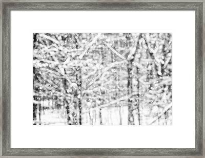 Simply Snowing Framed Print