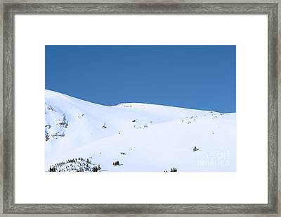 Framed Print featuring the photograph Simply Winter by Juli Scalzi
