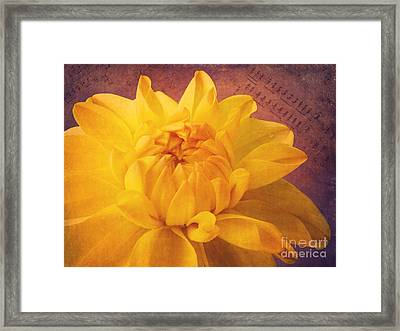 Sinfonie Framed Print by Angela Doelling AD DESIGN Photo and PhotoArt