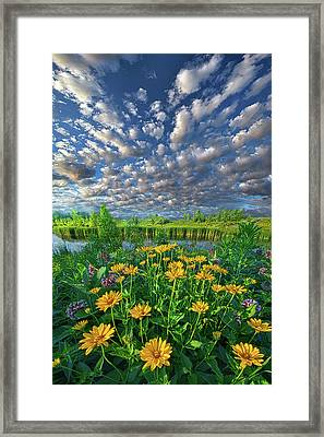 Sing For The Day Framed Print by Phil Koch