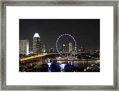 Singapore Eye Framed Print by Diane Height