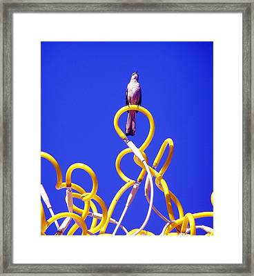Framed Print featuring the photograph Singing by Jeanette Oberholtzer