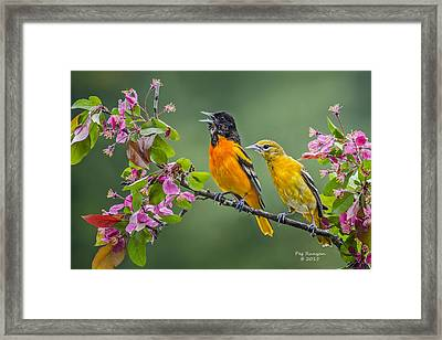 Singing To The Mrs. Framed Print