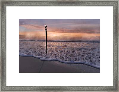 Single Chance Framed Print by Betsy Knapp