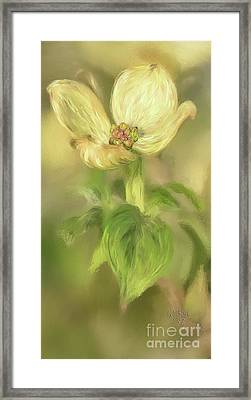 Framed Print featuring the digital art Single Dogwood Blossom In Evening Light by Lois Bryan