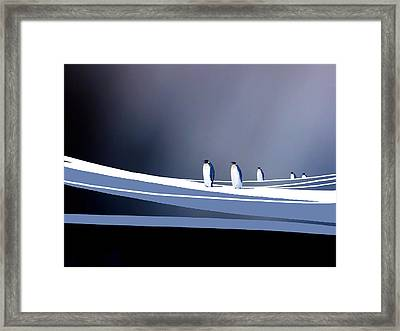 Single File Framed Print by Paul Sachtleben