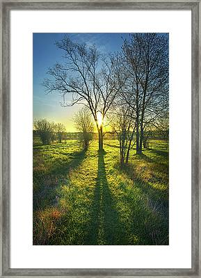 Framed Print featuring the photograph Single Moments by Phil Koch