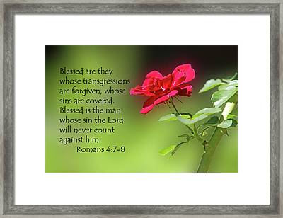 Single Red Rose Romans 4 V 7-8 Framed Print