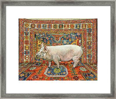 Singleton Carpet Pig Framed Print