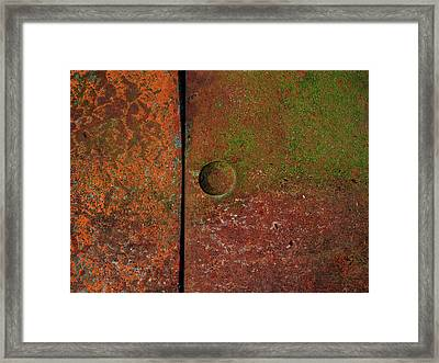 Singular ...raw Steel Framed Print by Tom Druin
