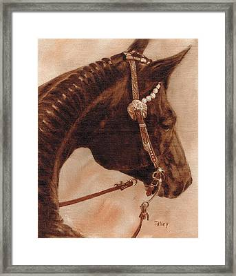 Framed Print featuring the painting Sissy by Pam Talley