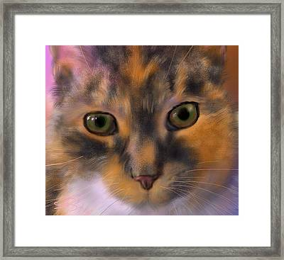 Sissy Up Close Framed Print