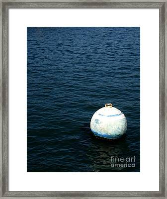 Sit And Bounce Framed Print