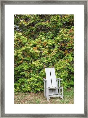 Sit For A Spell Framed Print