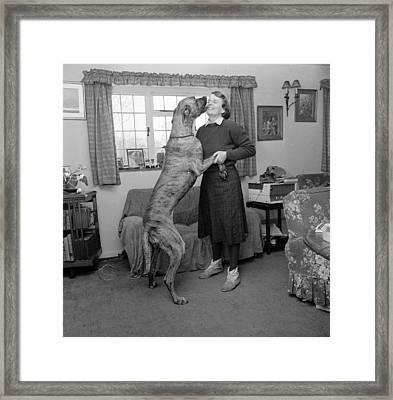Sit! Framed Print by John Drysdale