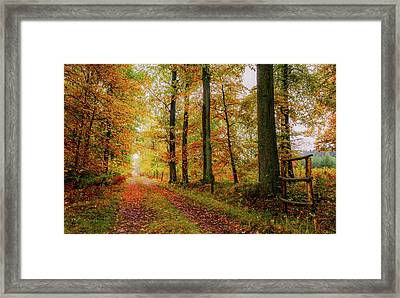 Framed Print featuring the photograph Site 6 by Dmytro Korol