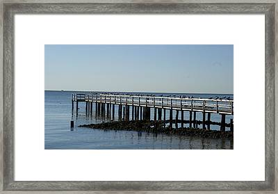 Sittin' On The Dock By The Bay Framed Print by Charles Kraus