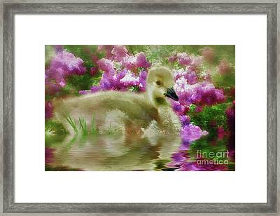 Sitting Among The Lilacs Framed Print