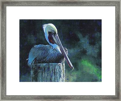 Sitting On The St Marks Framed Print
