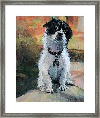 Sitting Pretty - Black And White Puppy Framed Print