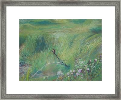 Sitting Pretty Framed Print by Jackie Bush-Turner