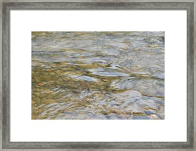 #sitwithnature Framed Print by Becky Furgason