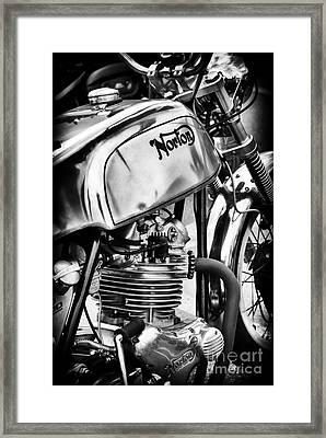 Siver Commando Framed Print by Tim Gainey