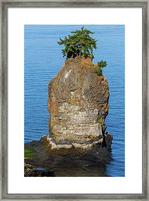 Siwash Rock By Stanley Park Framed Print by David Gn