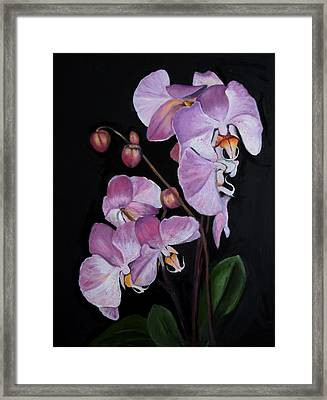 Six Orchids Framed Print