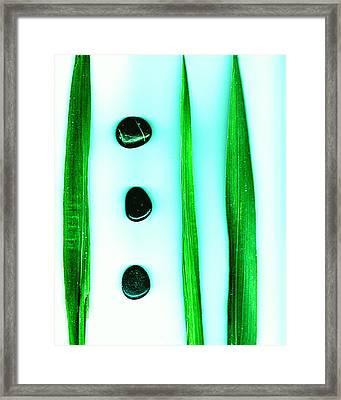 Six Framed Print by Slade Roberts