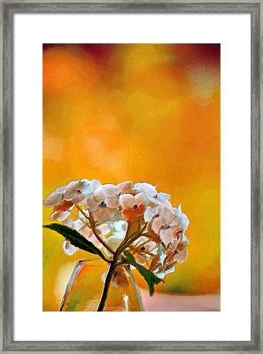 Sizzling Summer  Framed Print by Bonnie Bruno
