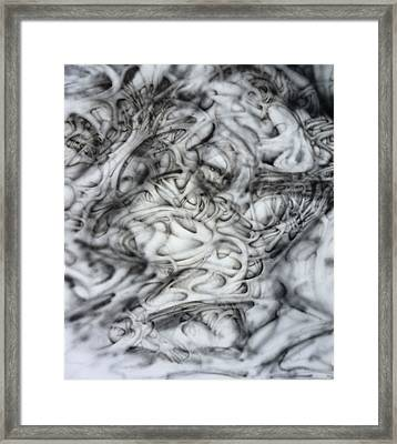 Skab Framed Print by David Frantz