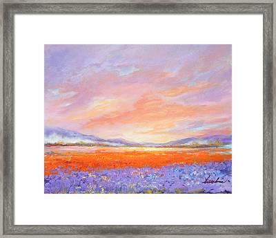 Skaggit Valley Tulips Framed Print
