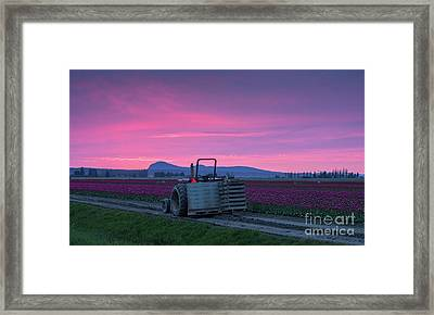 Skagit Valley Dusk Calm Framed Print by Mike Reid