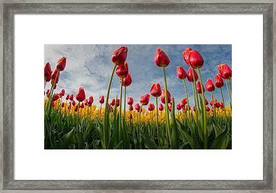 Framed Print featuring the photograph Skagit Valley Spring Joy by Dan Mihai
