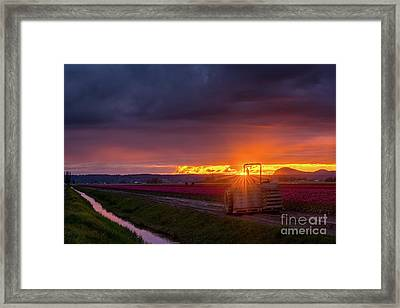 Framed Print featuring the photograph Skagit Valley Tractor Sunstar by Mike Reid