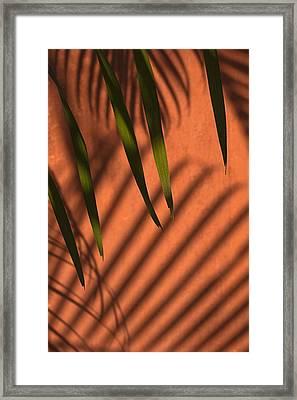 Skc 5521 Stripes Framed Print by Sunil Kapadia