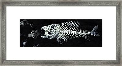 Skeletail Framed Print by JoAnn Wheeler